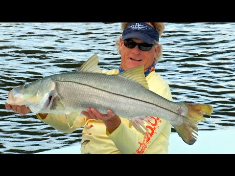 Swamp Thing Monster Snook Fishing in Stuart Florida