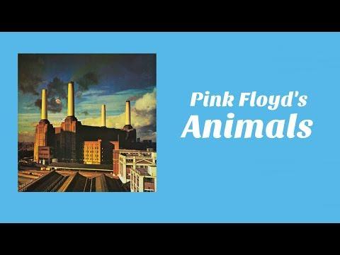 Understanding Animals