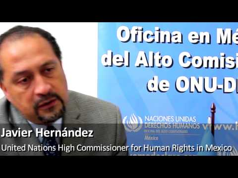 Latin American Overview on Human Rights