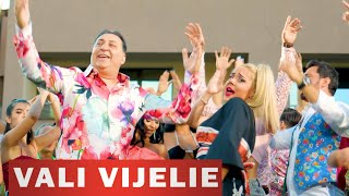 Download VALI VIJELIE si LEO DE LA ROSIORI - Haide sa bem (hitul petrecerilor 2020)