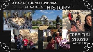 Smithsonian's National Museum of Natural History | Washington DC | 2019