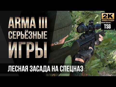 Лесная засада на спецназ • ArmA 3 Серьезные игры Тушино [2K]