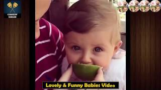 funny videos of babies