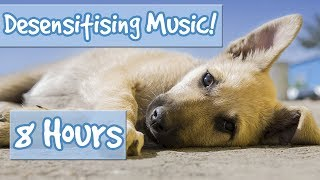 Desensitising Dog Music! Music with Sound Effects to Desensitise Dogs to Noises, Reduce Anxiety!🐶💤