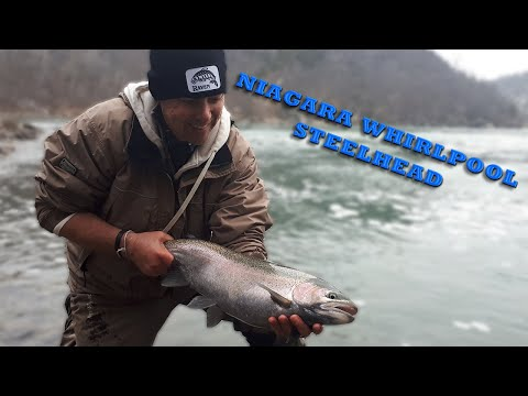 Winter Sessions Part 3: Niagara Whirlpool Steelhead