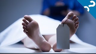 5 Gross Things That Happen When You Die | What the Stuff?!