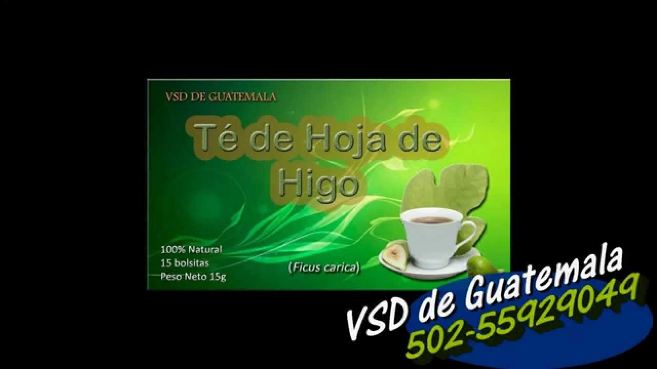 Te De Hoja De Higo - YouTube