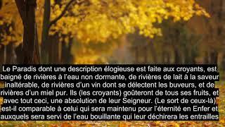 Download lagu Chapitre 47 Muhammad, Belle Récitation Du Coran, 90+ Sous-titres De Langue