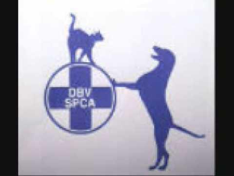 Whackhead calls the SPCA