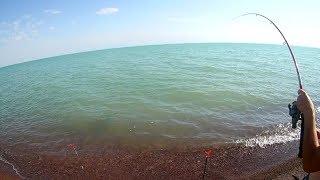 Рыбалка в Казахстане - Капчагай 4 Насосная 29.07.2017 г.