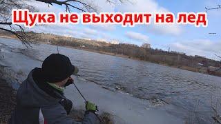 Жор ЩУКИ перед нерестом ловля рыбы на спиннинг