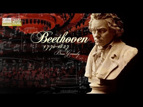 Beethoven - Symphony No.5 in C minor, Allegro con brio (Most famous Beethoven work)