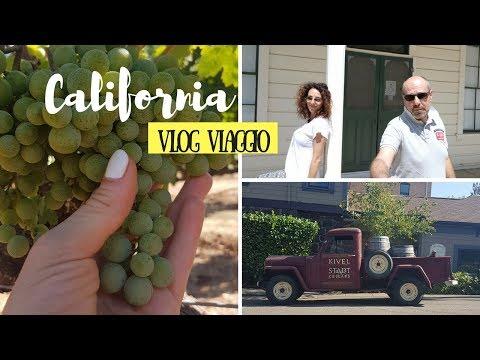 VLOG VIAGGIO CALIFORNIA: sulle strade del vino (Sonoma e Napa Valley) \\ VIAGGIO  ON THE ROAD