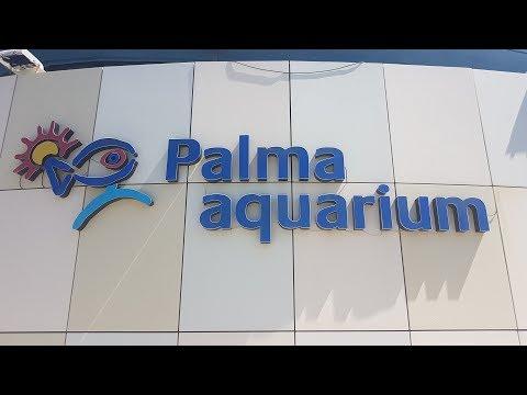 Palma Aquarium Mallorca 2017