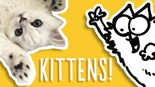 Kittens Being Cute - Simon's Cat Snaps | FAN VIDEOS