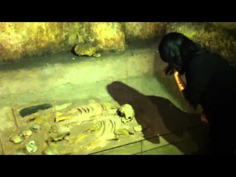 Who killed Magellan? - Academic Originality video entry 2014