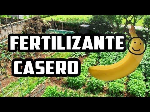 Cómo hacer fertilizante casero con plátano