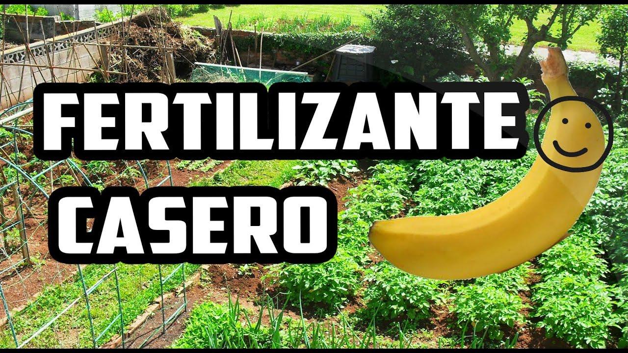 C mo hacer fertilizante casero con pl tano youtube - Hacer ambientador casero con suavizante ...