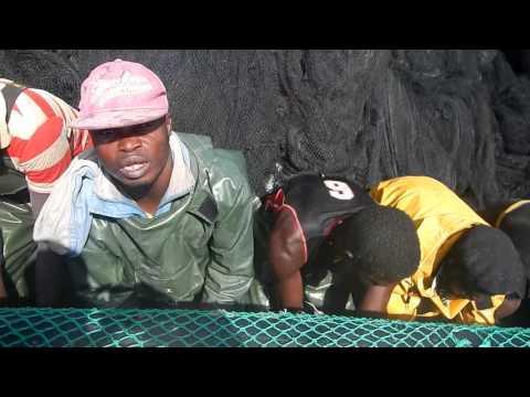 cooperative de peche artisanal en Mauritanie (LEMOOL)8