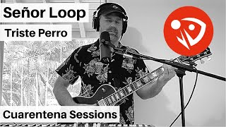 Señor Loop - Triste Perro (Cuarentena Sessions) #QuédateEnCasa #Conmigo