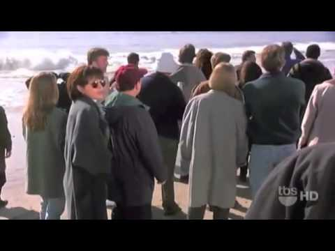 Seinfeld marine biologist youtube