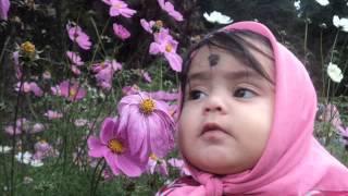 Abhiyum Naanum Vaa Vaa en Devadhayae song