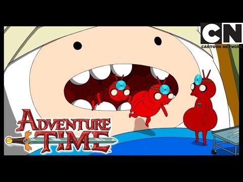 Adventure Time | Every Episode Ever - Season 6 | Cartoon Network