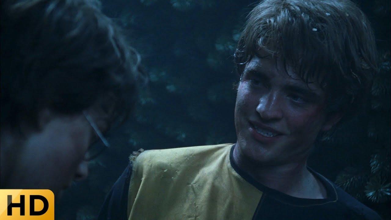 Гарри помогает Седрику избавиться от корней лабиринта ...