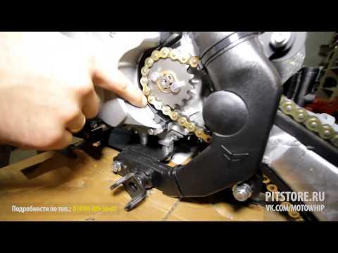 Spring tune-up Nitro Circus Pitster Pro LXR 155r & Suzuki RM 250