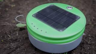 Tertill: Solar Powered Weeding Robot For Home Gardens