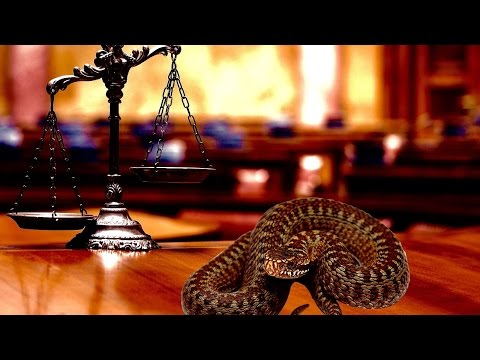 Judge + Prosecution Misconduct: Biased and Unbalanced Justice Examined