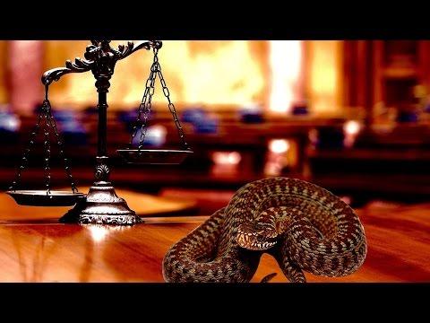 Judge + Prosecution Misconduct: Biased and Unbalanced Justice Examined