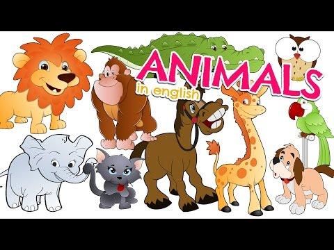 Nombres de los ANIMALES EN INGLÉS para niños - Vocabulario (Animals in english for kids)