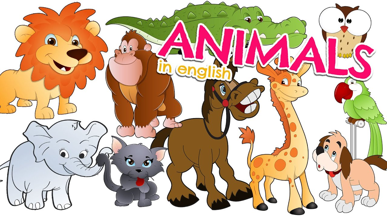 animals essays children All the animals essay we have provided below are written by the professional content writer in very simple and easy words especially for your small kids and children you can select any of the essays on animals given below according to the need and requirement.