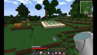 Minecraft 1.2.5 Let