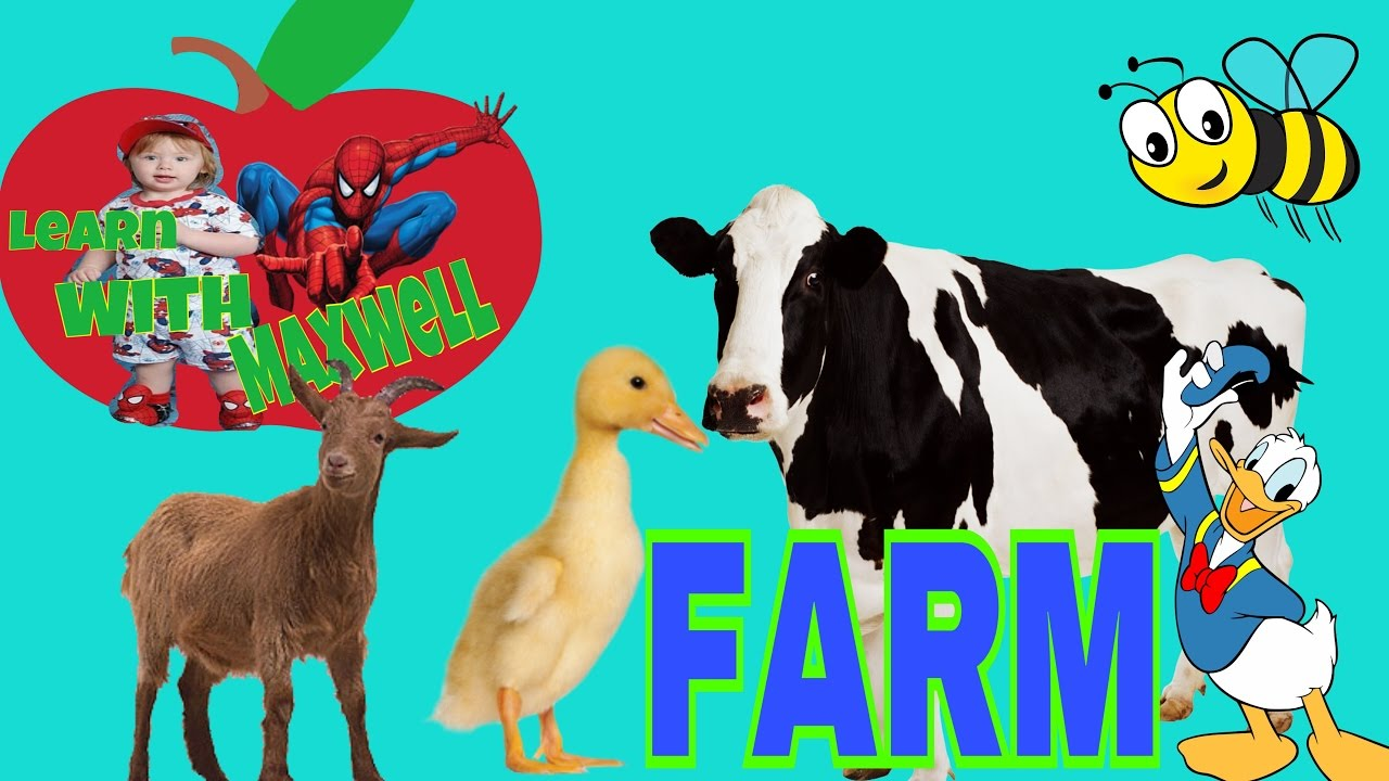 Farm Animals Names – HD Wallpapers