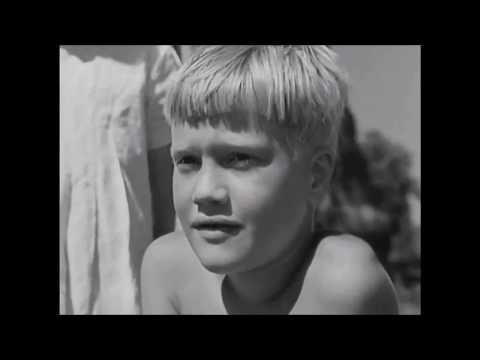 Svenska välfärdens historia [1940]