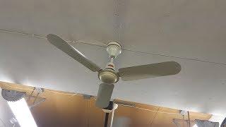 """Wing TAT 48"""" Industrial/Commercial Ceiling Fan"""