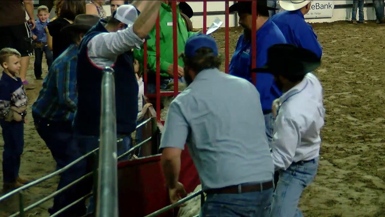 Young Men's Business League - South Texas Fair & Rodeo