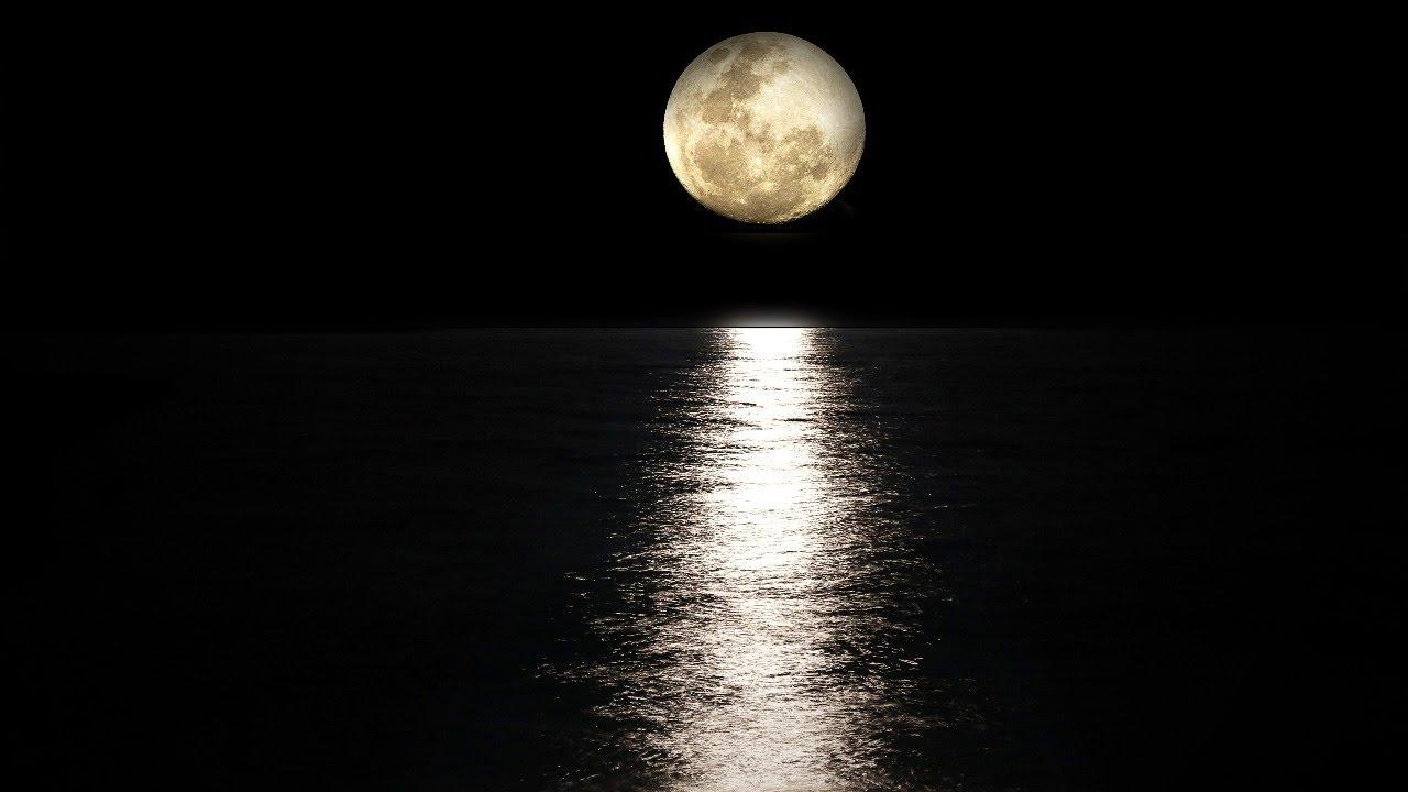 💤  Musica para dormir profundamente en menos de 5 minutos -Estudiar y meditar- 💤💤💤