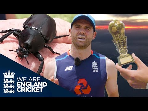 Giant Bugs And A Snoring Alastair Cook: Jimmy Anderson's Ashes Diary - Episode 2