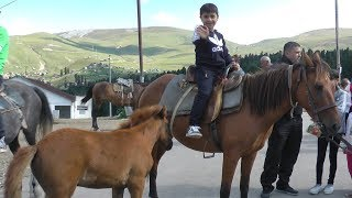 Guka Pretend Play in Village 🏇Riding a Horse🏇
