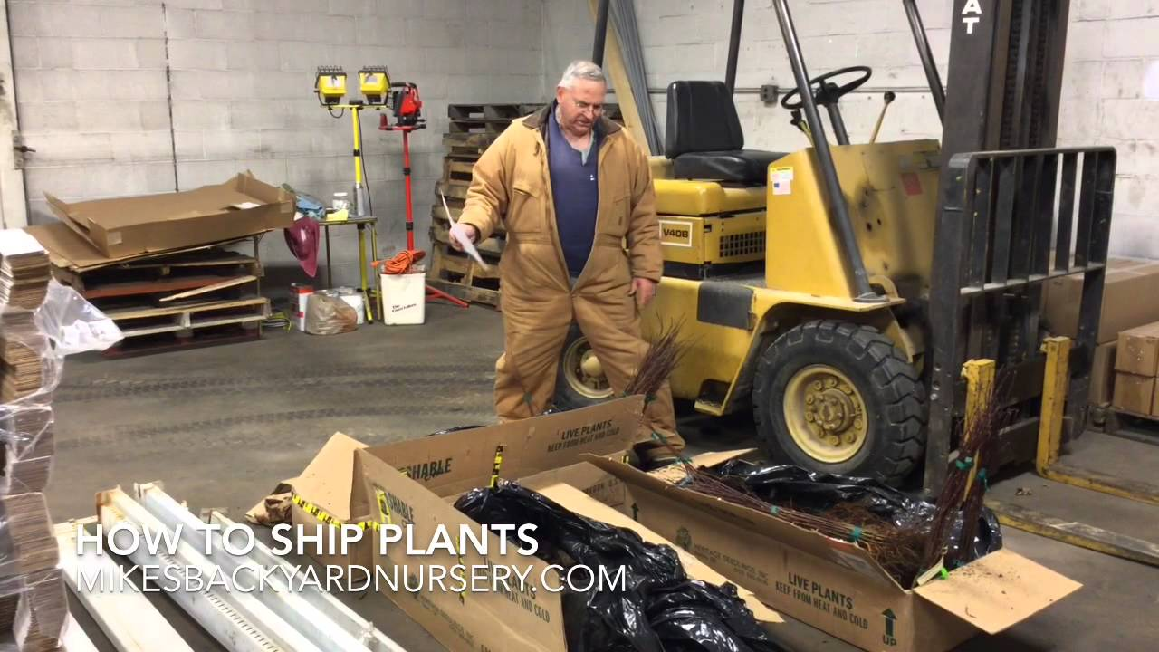 how to ship plants youtube