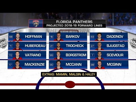 Florida Panthers Future