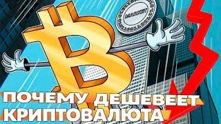 видео Падение курса биткоина: причины и следствия, рынок криптовалют