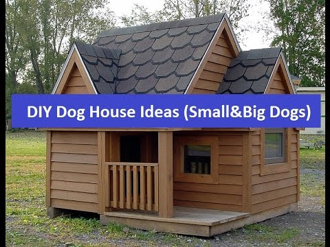 Cheap DIY Dog House Ideas For Small And Big Dogs YouTube