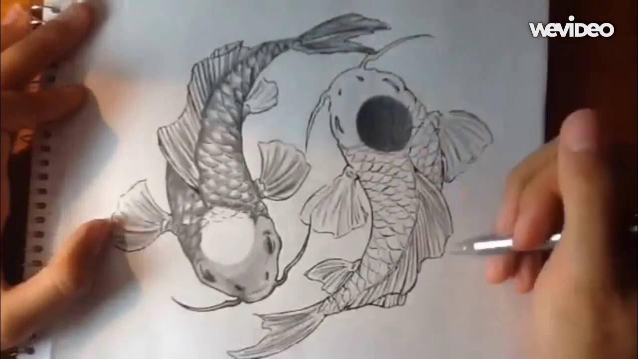 Yin yang koi fish pencil pen drawing timelapse for The fish com