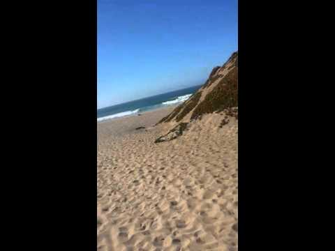 Monterrey beach near CSUMB