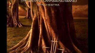 The Devin Townsend Band - Notes From Africa