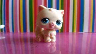 LPS распаковка редкой персидской кошки с синим магнитом...Ааааа